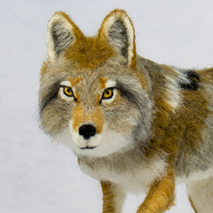 Needle Felt a Wolf FIF 2020 | Fiber in the Forest