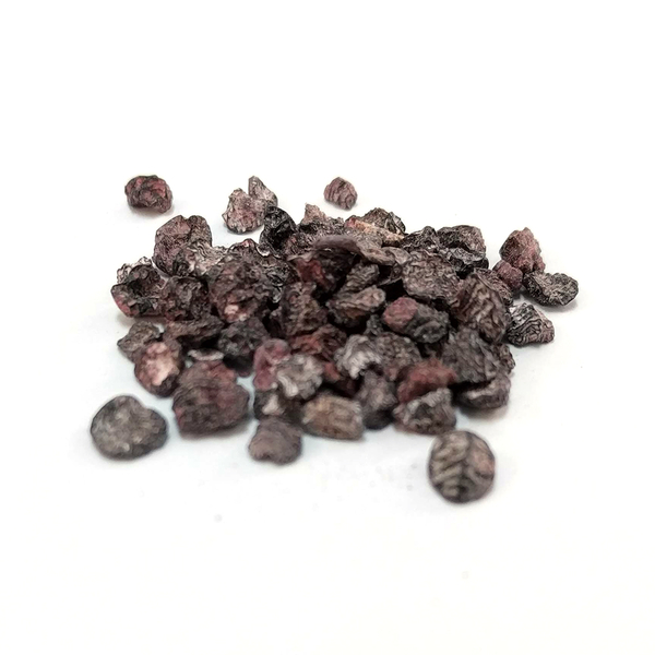 Cochineal - 1oz pkg | Natural Dyestuffs & Mordants