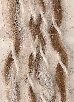 Image 105 White, Brown, White
