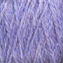 Image Chicory Highland Cone