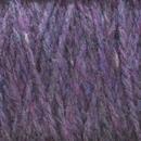 Image Delphinium Highland Cone