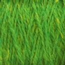 Image Kiwi Highland Cone