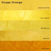 Image Osage Orange