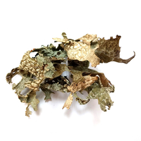 Image Lichen: Lobaria pulmonaria - 2.5 oz